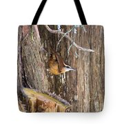 At Home In The Cedars Tote Bag