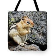 At Home In The Lava Beds Tote Bag