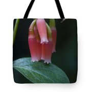 At Orchid Show Tote Bag