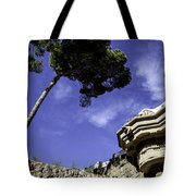 At Parc Guell In Barcelona - Spain Tote Bag