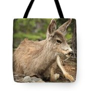 At Rest In The Rockies Tote Bag