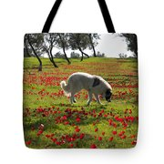 At Ruchama Forest Israel 1 Tote Bag