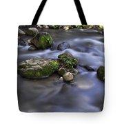 At The Banias River 1 Tote Bag