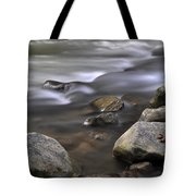 At The Banias River 3 Tote Bag