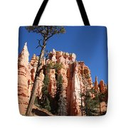 At The Bottom Of The Bryce Np Tote Bag