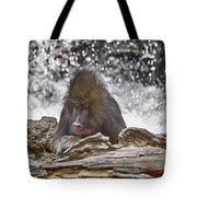 At The Edge Of The Waterfall Tote Bag