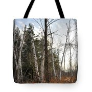 At The Edge Of The Wetland Tote Bag