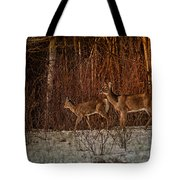 At The Edge Of The Woods Tote Bag
