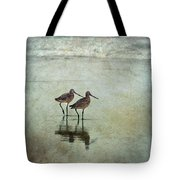 At The End Of A Day Tote Bag