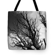 At The End Of Time Tote Bag