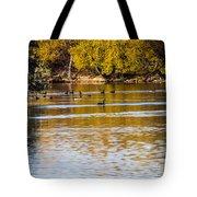 At The Lake-34 Tote Bag