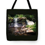 At The Mill Pond Dam Tote Bag