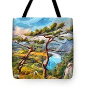 At The Top Of The Mountain Tote Bag
