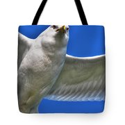 At Your Disposal The Waiting Gull Tote Bag