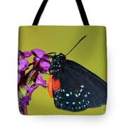 Atala Butterfly Tote Bag
