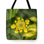 Atlanta Botanical Garden Flowers V9 Tote Bag