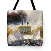 Atlantic Ghost Crab 2760 Tote Bag
