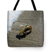 Atlantic Ghost Crab Tote Bag