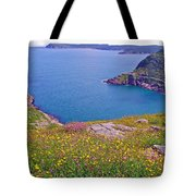 Atlantic Ocean From Signal Hill National Historic Site In Saint John's-nl Tote Bag
