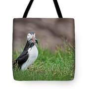 Atlantic Puffin With Sandeels Tote Bag