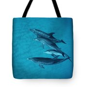 Atlantic Spotted Dolphin Adults Tote Bag