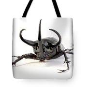 Atlas Beetle Tote Bag