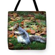 Attentive Squirrel Tote Bag