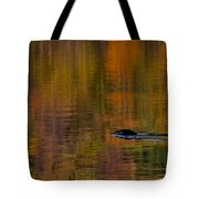Atumn Reflections Tote Bag