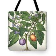 Aubergine Melanzana Fructu Pallido Tote Bag