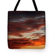 Audubon Sunset Light Tote Bag