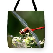 August Dragonfly  Tote Bag