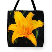 Aurelian Lily Tote Bag