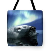 Aurora Dreaming Tote Bag