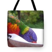Australia - One Wet Lorikeet Feeding Tote Bag