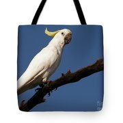Australian Bird Tote Bag