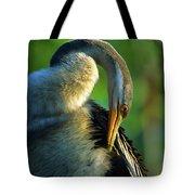 Australian Darter Preening Tote Bag