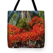 Australian Poinciana Tote Bag