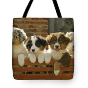 Australian Sheepdog Puppies Tote Bag