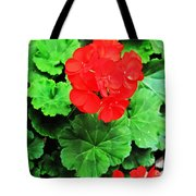 Austrian Red Tote Bag