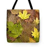Autumm Is Coming 2 Tote Bag