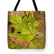autumm is coming 3 - A carpet of autumn color leaves Tote Bag