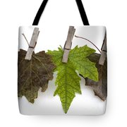 autumm is hanged out - Autumn color leaves Tote Bag