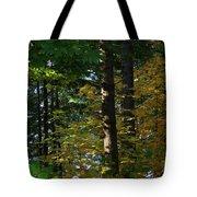 Autumn 10 Tote Bag