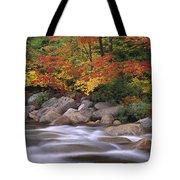 Autumn Along Swift River  Tote Bag