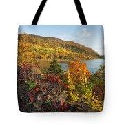 Autumn Along The Hudson Tote Bag