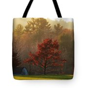 Autumn Ambers And Umbers Tote Bag