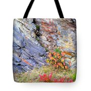 Autumn And Rocks Vertical Tote Bag