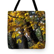 Autumn Tote Bag by Anonymous