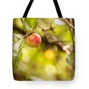 Autumn Apple Tote Bag