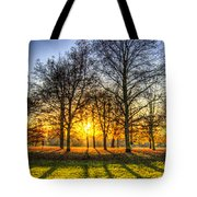 Autumn Arrives Tote Bag